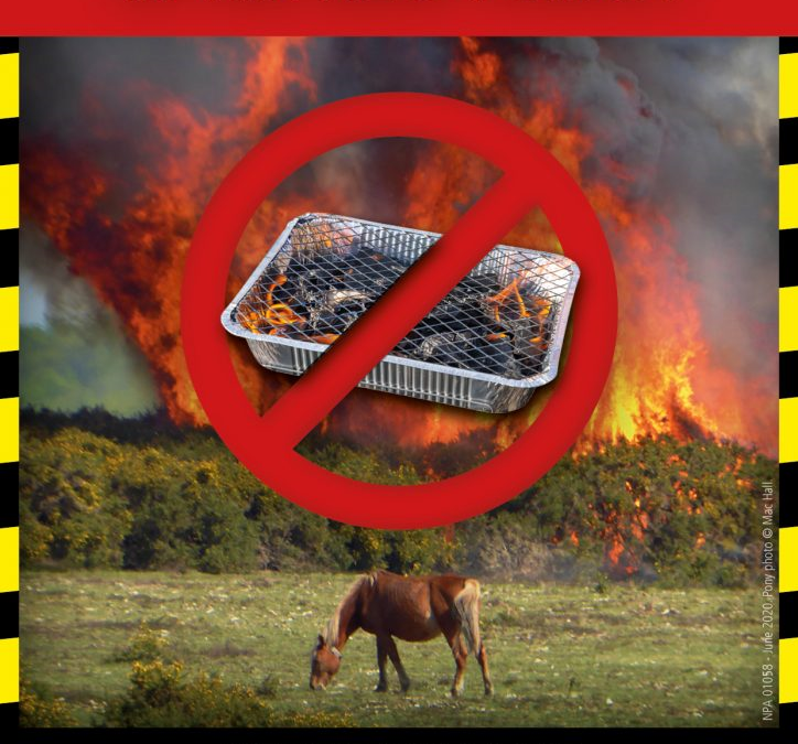 Disposable barbecue ban in support of The New Forest National Park Authority